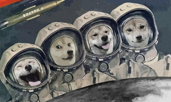 President of the Dogecoin Chinese Association Believes That Dogecoin Has Its Unique Culture and Cannot Be Replaced
