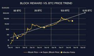 2020 Halving's Likely Impact on Bitcoin, Bitcoin Cash